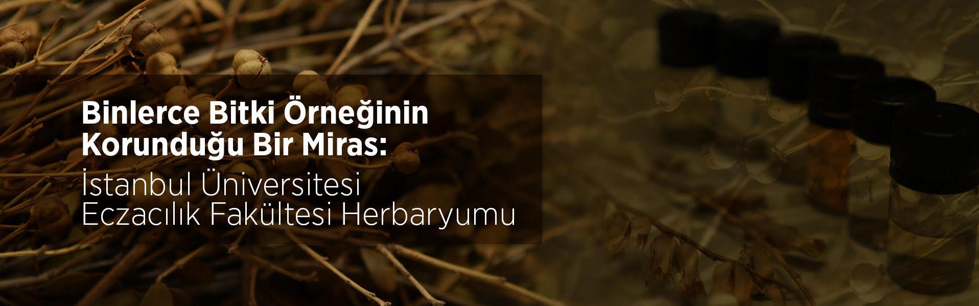 herbaryum eczacılık