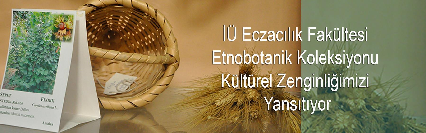 İÜ-Eczacılık-Fakültesi-Etnobotanik--Koleksiyonu--Kültürel-Zenginliğimizi--Yansıtıyor
