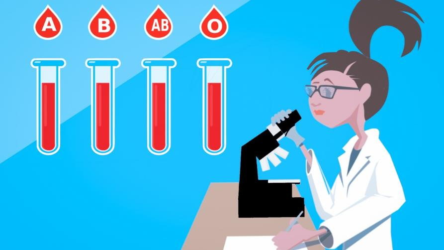 anemi akdeniz-anemisi talasemi kan-bağışı