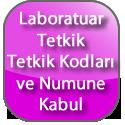 teknoloji.transfer.ofisi_