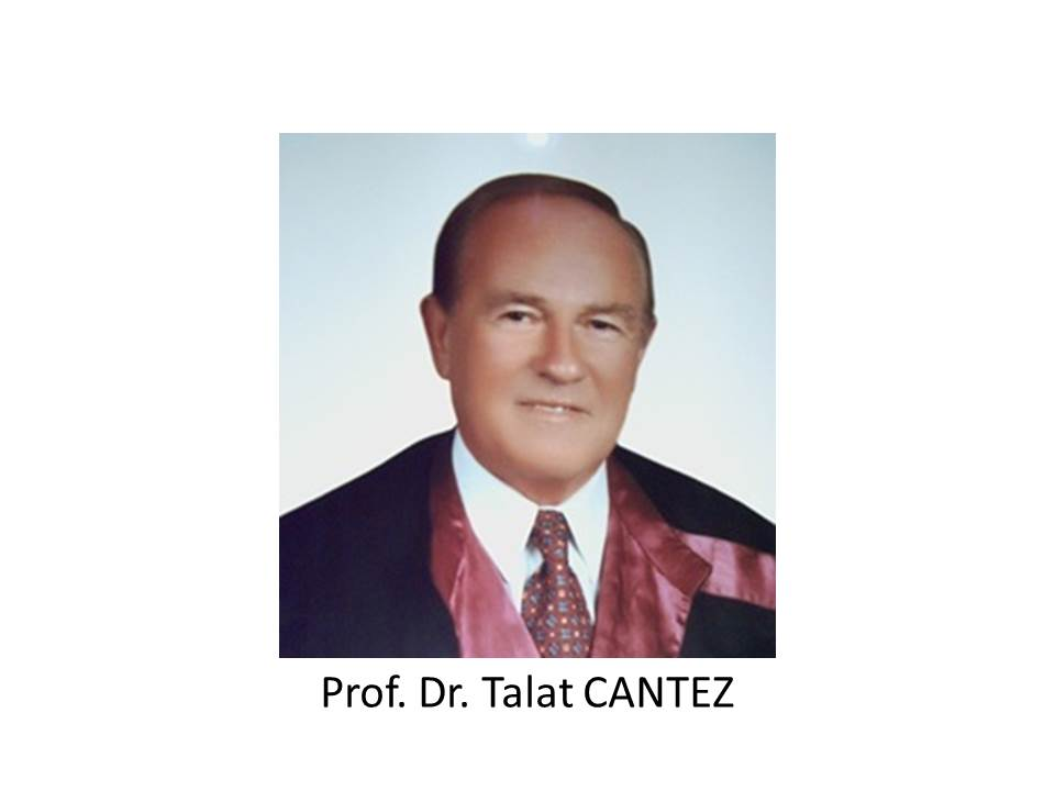 Prof. Dr. Talat CANTEZ