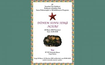 Sanat Psikoterapisi ve Rehabilitasyon Programı