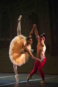 balerin&balet
