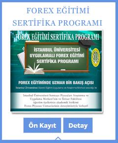 forex programı