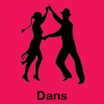 dans_siyah